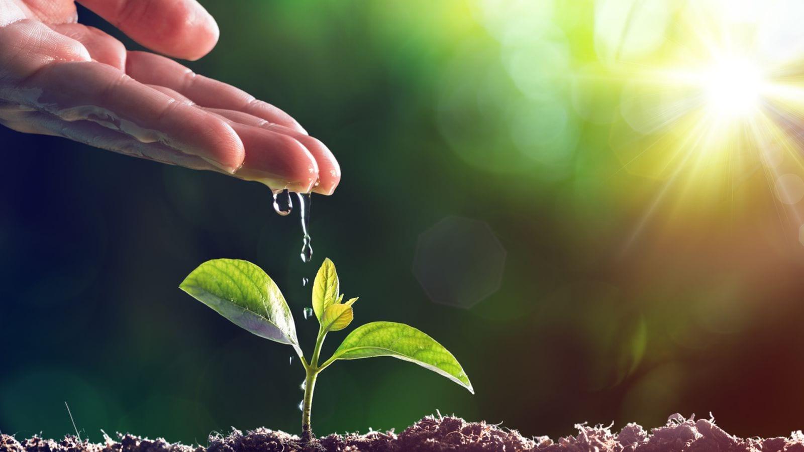 Creative Church Planting Webinar